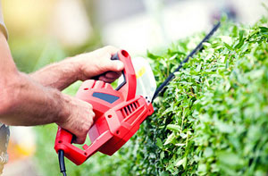 Hedge Cutting Frodsham Cheshire WA6